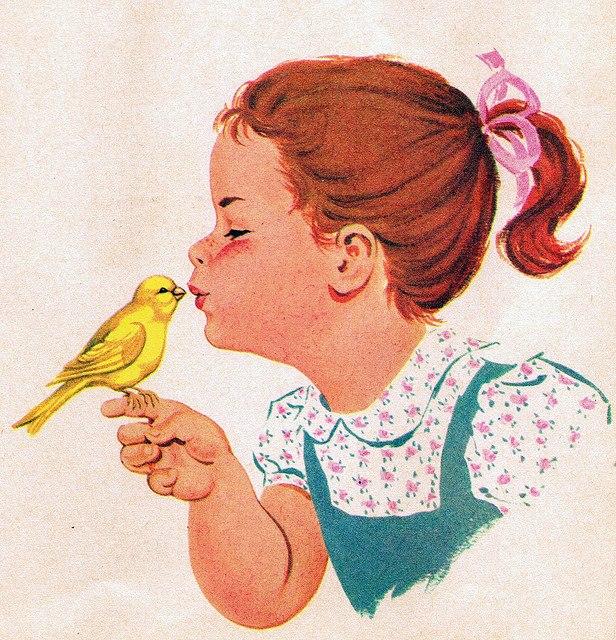 Canary Love