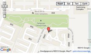 (Beeld: Straits Times / Google Earth)